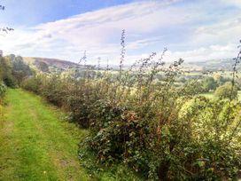 Hiraeth - Mid Wales - 4455 - thumbnail photo 14
