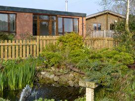 Nuthatch - Lake District - 4560 - thumbnail photo 3