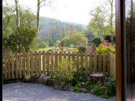 Nuthatch - Lake District - 4560 - thumbnail photo 9