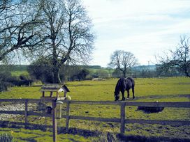 The Firs - Shropshire - 508 - thumbnail photo 8