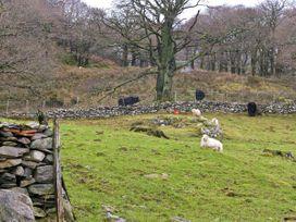 Y Bwthyn - North Wales - 5228 - thumbnail photo 10