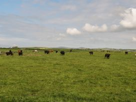 Ty Fferm Bodlasan - Anglesey - 5625 - thumbnail photo 41