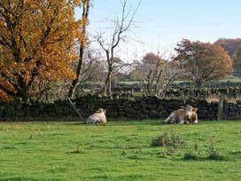 Stoneycroft Barn - Peak District - 6188 - thumbnail photo 13
