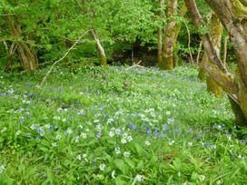 Hendre Aled Farmhouse - North Wales - 6482 - thumbnail photo 13
