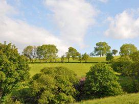 Hendre Aled Farmhouse - North Wales - 6482 - thumbnail photo 16