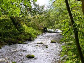 Hollie Cottage - Northumberland - 6796 - thumbnail photo 9