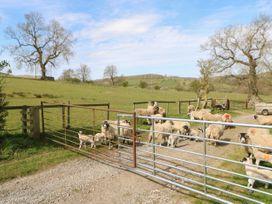 Sunnyside Cottage - Yorkshire Dales - 8082 - thumbnail photo 22