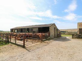 Sunnyside Cottage - Yorkshire Dales - 8082 - thumbnail photo 25