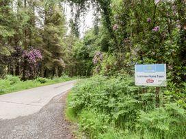 Rose Cottage - Scottish Lowlands - 8201 - thumbnail photo 21