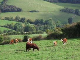 The Old Dairy - Cotswolds - 904110 - thumbnail photo 23