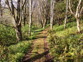Wisteria Cottage - Devon - 905075 - thumbnail photo 21