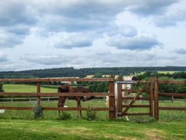 Croft View - Herefordshire - 905755 - thumbnail photo 13