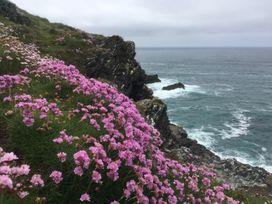 4 Ocean 1 - Cornwall - 906879 - thumbnail photo 16
