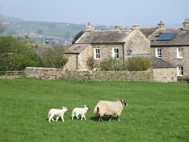 Cross Beck Cottage - Yorkshire Dales - 907018 - thumbnail photo 2