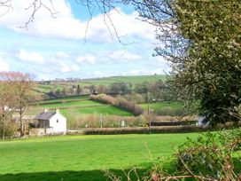 Gwynfryn Cottage - Mid Wales - 912385 - thumbnail photo 9