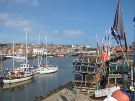 Raw Pastures - Whitby & North Yorkshire - 913267 - thumbnail photo 19