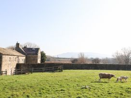 Zoey Cottage - Yorkshire Dales - 913342 - thumbnail photo 22
