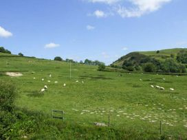 Cwmgilla Farm - Mid Wales - 914604 - thumbnail photo 23