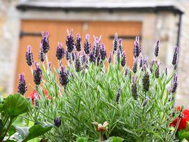 Spout Cottage - Lake District - 914676 - thumbnail photo 23
