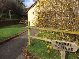 Walnut Cottage - Somerset & Wiltshire - 914740 - thumbnail photo 23