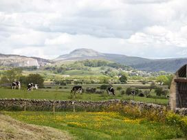 Pendle View - Yorkshire Dales - 914776 - thumbnail photo 17