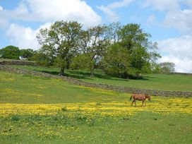 Penyghent View - Yorkshire Dales - 914777 - thumbnail photo 11