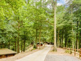 Hollies Lodge - Mid Wales - 915357 - thumbnail photo 21