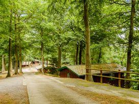 Hollies Lodge - Mid Wales - 915357 - thumbnail photo 22