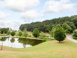 Hollies Lodge - Mid Wales - 915357 - thumbnail photo 25