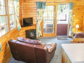 Hollies Lodge - Mid Wales - 915357 - thumbnail photo 6