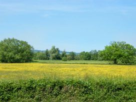Painter's Cottage - Herefordshire - 915365 - thumbnail photo 15