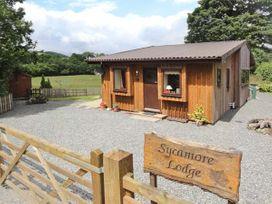 Sycamore Lodge - Mid Wales - 915502 - thumbnail photo 2