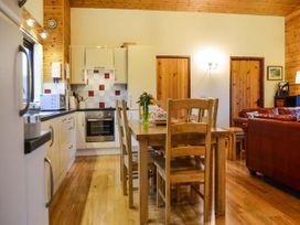 Sycamore Lodge - Mid Wales - 915502 - thumbnail photo 7
