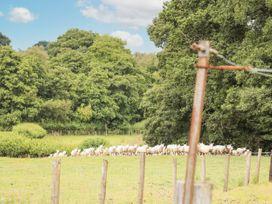 Holly Farm Cottage - Mid Wales - 917219 - thumbnail photo 36