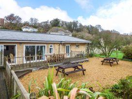 Swifts - Isle of Wight & Hampshire - 918526 - thumbnail photo 2