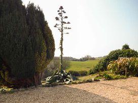 Swifts - Isle of Wight & Hampshire - 918526 - thumbnail photo 17