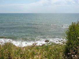 Swifts - Isle of Wight & Hampshire - 918526 - thumbnail photo 19