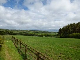 Bod Feddau - Anglesey - 919166 - thumbnail photo 14