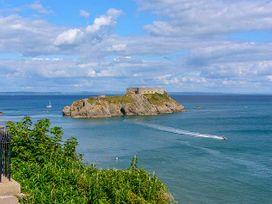 Cann Ross - South Wales - 919182 - thumbnail photo 20