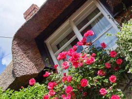Little Thatch - Dorset - 919506 - thumbnail photo 14