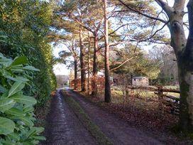 Wood Glen Cottage - Kent & Sussex - 920524 - thumbnail photo 17