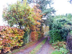 Wood Glen Cottage - Kent & Sussex - 920524 - thumbnail photo 18