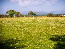 Bwthyn y Dderwen (Oak Cottage) - North Wales - 921645 - thumbnail photo 16