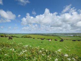 Fferam Y Llyn - Anglesey - 922967 - thumbnail photo 32