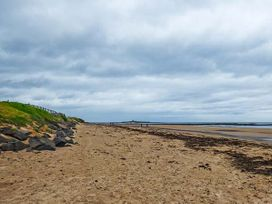 Sandy Knowes - Northumberland - 924140 - thumbnail photo 17