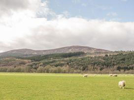 Cosy Cottage - Scottish Highlands - 924176 - thumbnail photo 13