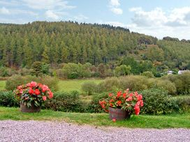 The Little White Cottage - North Wales - 926008 - thumbnail photo 9