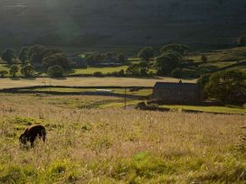 Dale House Farm Cottage - Yorkshire Dales - 926180 - thumbnail photo 19