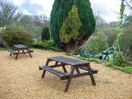 Swallows - Isle of Wight & Hampshire - 926490 - thumbnail photo 16