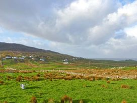 The Stone Cottage Apartment - Shancroagh & County Galway - 928419 - thumbnail photo 12